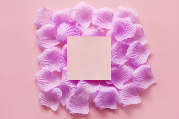 Bellissimo sfondo rosa con petali di fiori e uno spazio quadrato al centro per aggiungere testo
