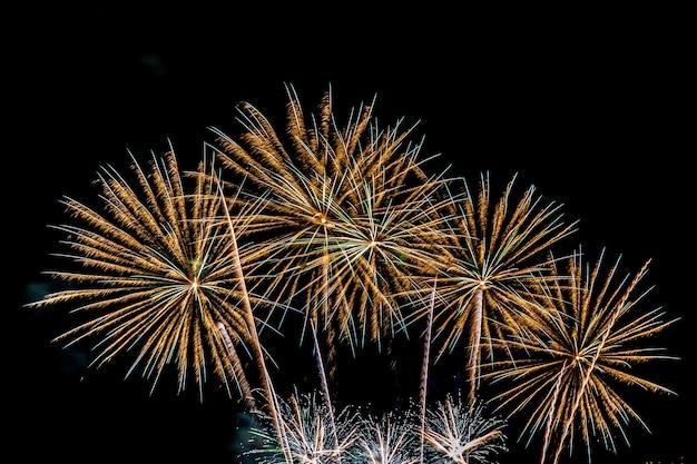 Bellissimo spettacolo pirotecnico colorato di notte per festeggiare