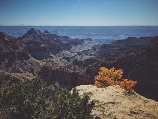 Bello colpo dell'orlo del nord del parco nazionale del grand canyon un giorno soleggiato