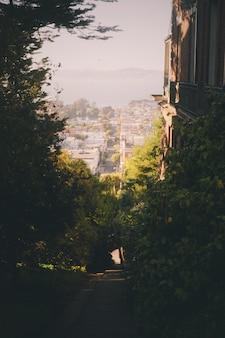 Bello colpo di paesaggio verde nella città di san francisco