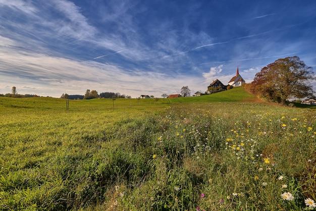 Bello colpo di un campo erboso con le costruzioni nella distanza sotto un cielo blu di giorno