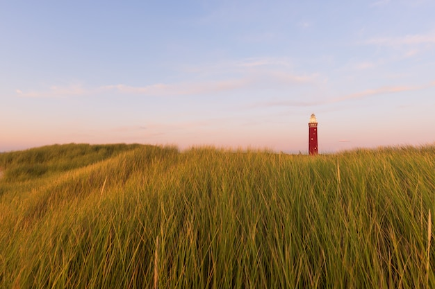 Bello colpo di un campo erboso con un faro rosso nella distanza e nel cielo blu