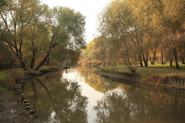 Bello colpo di un fiume nel parco a mosca con il riflesso degli alberi e del cielo