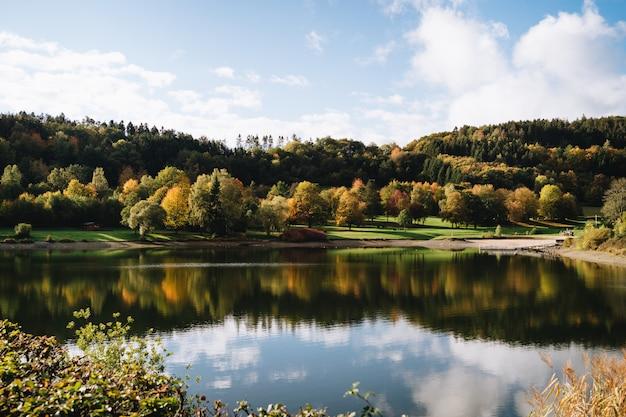 Bello colpo di un lago con il riflesso del cielo in un parco in autunno