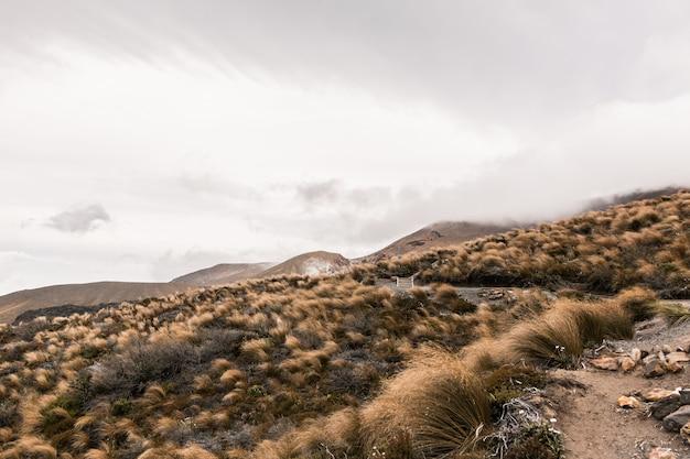Bello colpo di una collina asciutta del deserto con le montagne