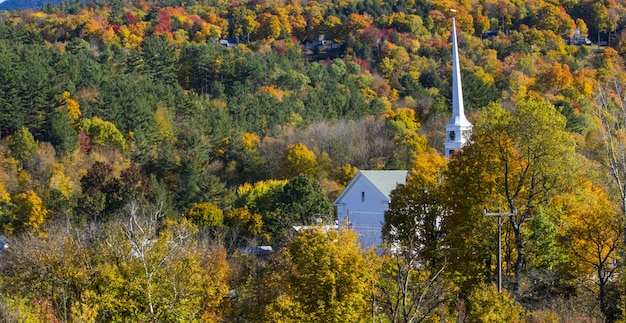 Bello colpo di una costruzione nella foresta variopinta di autunno un giorno luminoso