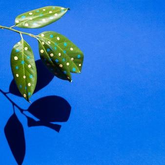 Bello concetto dipinto delle foglie con le ombre e lo spazio della copia