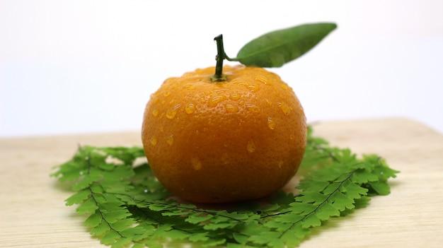 Bello e fresco servizio fotografico arancione