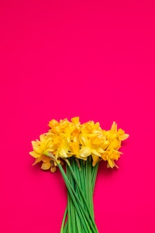 Bello mazzo dei daffodils gialli su priorità bassa rossa