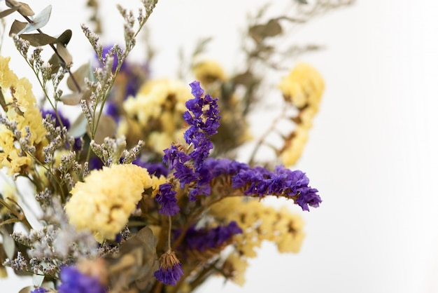 Bello mazzo dei fiori secchi sopra priorità bassa bianca