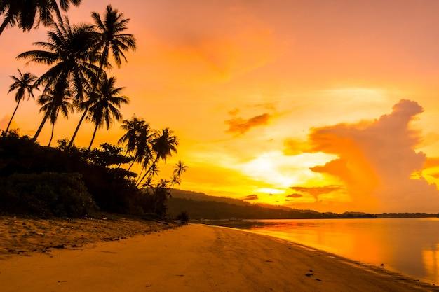 Bello oceano e spiaggia di vista all'aperto con l'albero tropicale del cocco a tempo di alba
