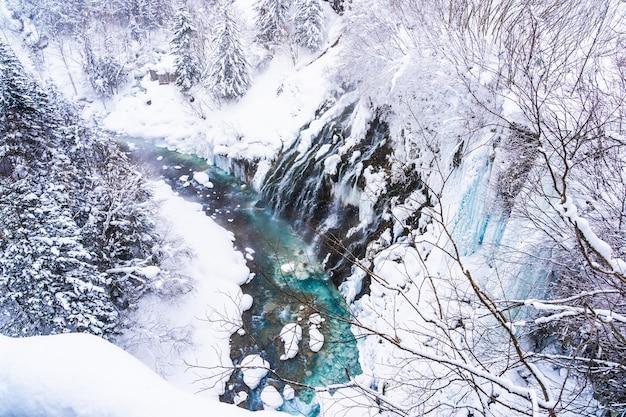 Bello paesaggio all'aperto della natura con la cascata di shirahige e ponte nella stagione invernale della neve