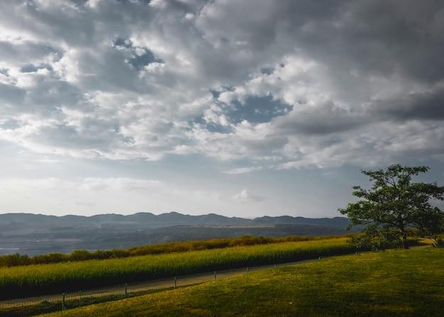 Bello paesaggio della natura e fondo del cielo nuvoloso