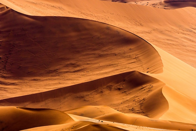 Bello paesaggio della sabbia arancio della duna di sabbia arancio al deserto di namib nel parco nazionale sossusvlei di namib-naukluft in namibia.
