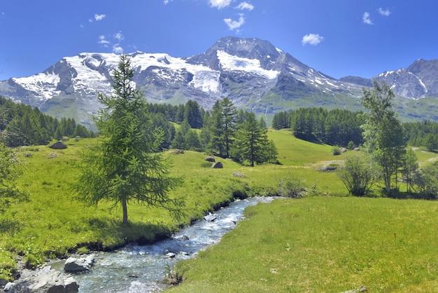 Bello panorama scenico nel prato nevoso della montagna alpina e verde con un piccolo fiume