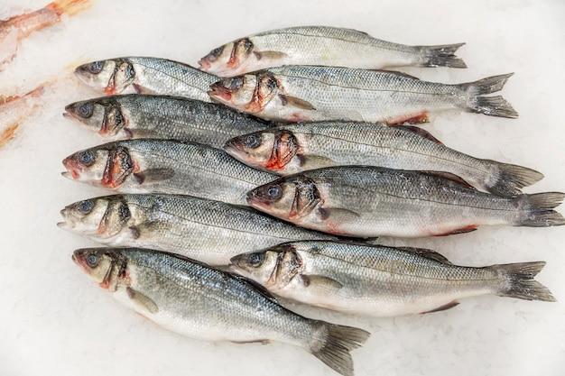Bello pesce fresco su ghiaccio in un deposito. avvicinamento. vista dall'alto.