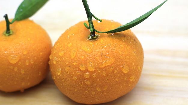 Bello photoshoot arancione fresco
