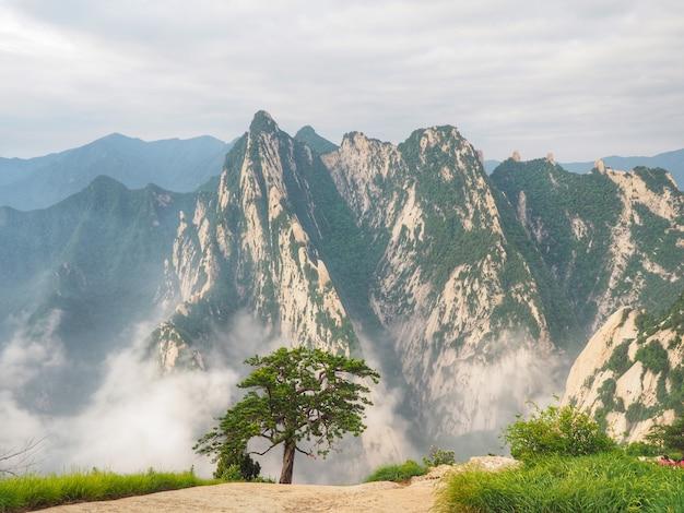 Bello scenario delle cime e della foschia alla montagna di huashan nella provincia di shaanxi