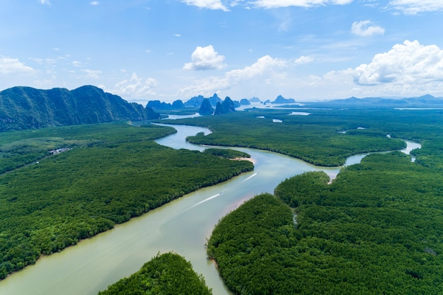 Bello scenario naturale della vista del paesaggio nella foresta tropicale della mangrovia dell'asia con la piccola isola