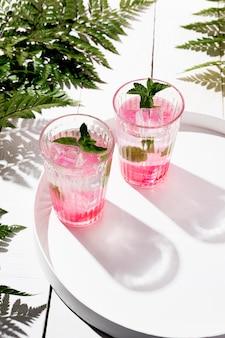 Bevanda ghiacciata dell'aroma della frutta sul vassoio