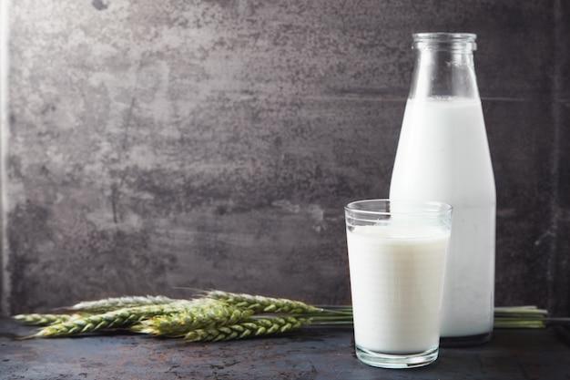 Bicchiere di latte con grano su fondo grigio