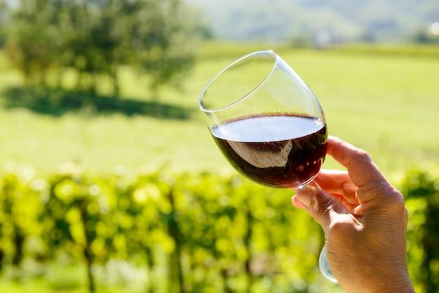 Bicchiere di vino rosso con un vigneto