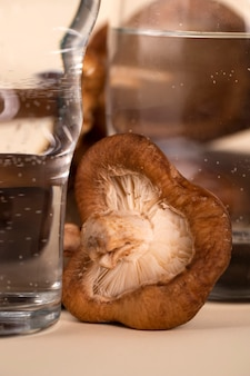 Bicchieri e funghi di primo piano
