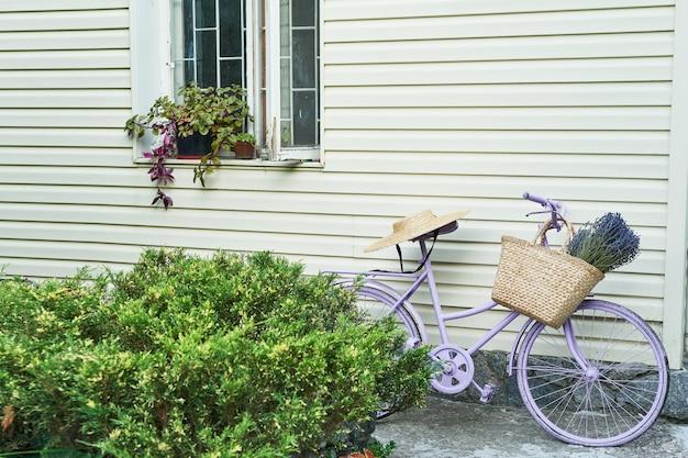 Bici lilla con un cesto di lavanda nel cortile