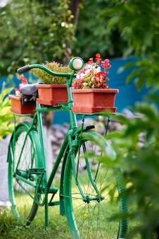 Bicicletta dipinta di verde usata come supporto per vasi di fiori