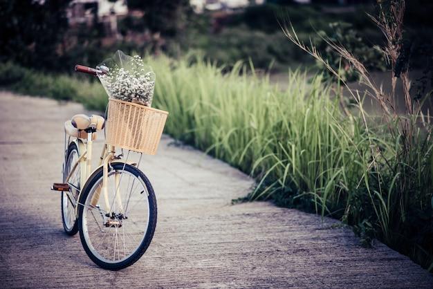 Biciclette parcheggiate sulla strada nel parco.