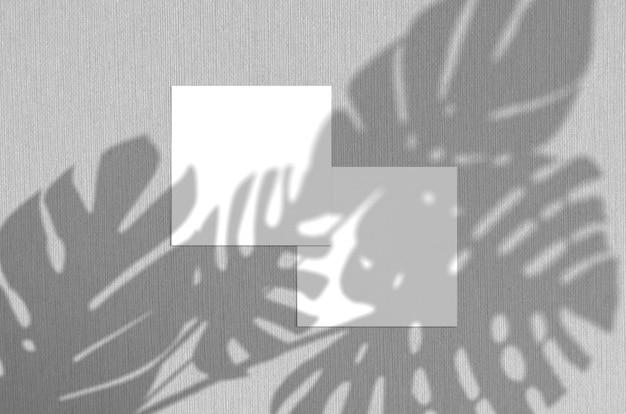 Biglietto da visita . l'illuminazione naturale della sovrapposizione ombreggia le foglie dei monstera. biglietti da visita quadrati. scena delle ombre della foglia su fondo grigio.