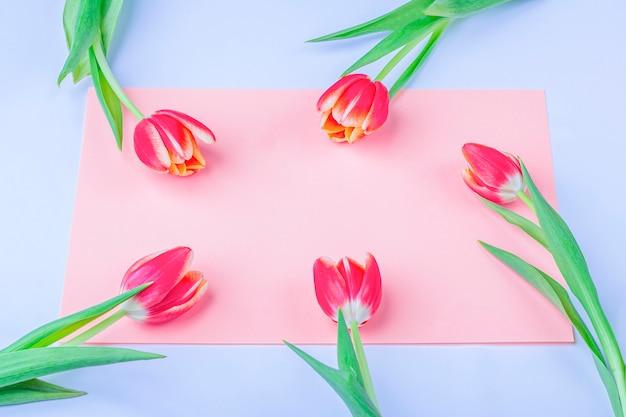 Biglietto di auguri con cornice di tulipani freschi su sfondo rosa.