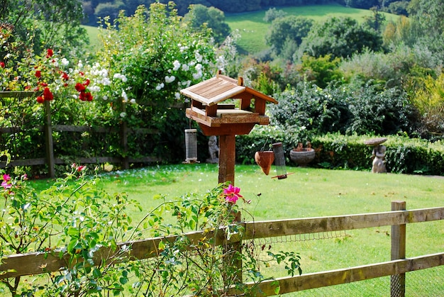 Birdhouse in cotswolds inghilterra