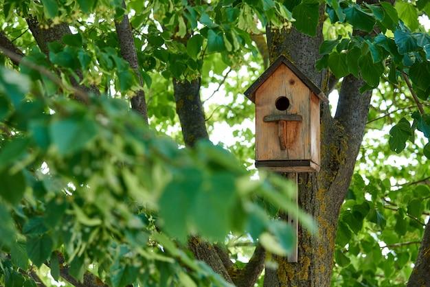 Birdhouse su un albero in foglie verdi.