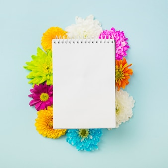 Blocchetto per appunti a spirale sopra i fiori variopinti del crisantemo su priorità bassa blu