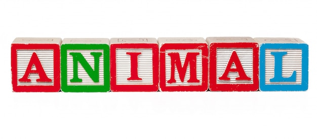 Blocchi alfabeto colorato con lettere