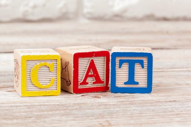 Blocchi giocattolo in legno con il testo: cat