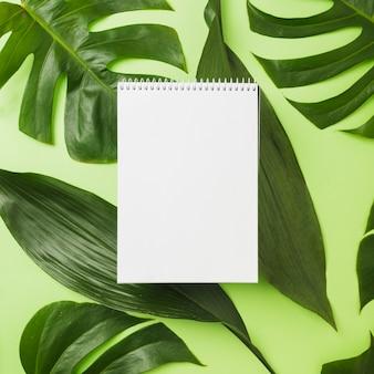 Blocco note a spirale sopra le foglie verdi su fondo