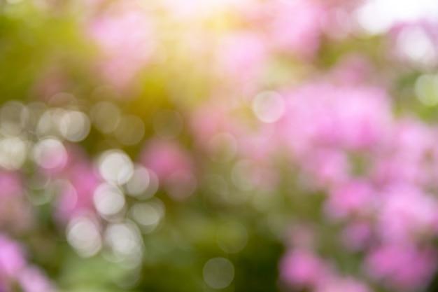 Bokeh natura verde e fiori