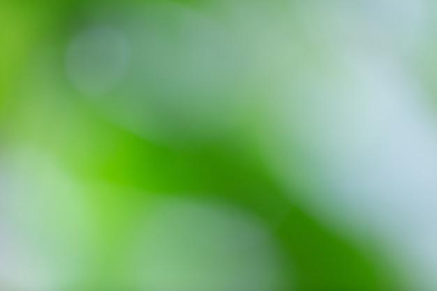 Bokeh verde sulla sfocatura della natura. elemento di design.