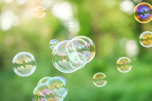 Bolle di sapone sulla natura verde