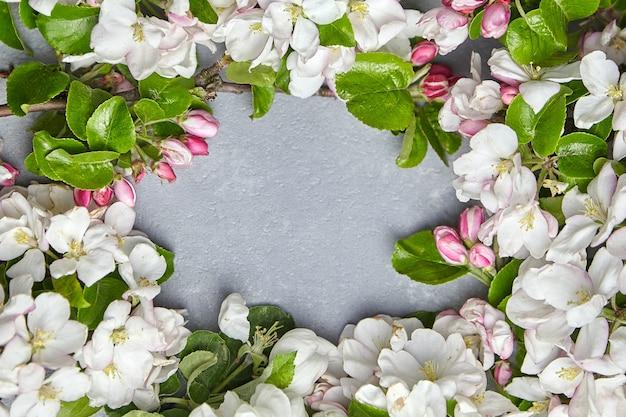 Bordo del fiore di primavera, rami di melo con fiori rosa e bianchi e cornice di foglie verdi su una superficie di cemento grigio. sfondo floreale, vista dall'alto. fiore di primavera