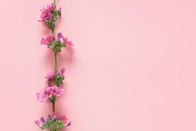 Bordo del ramo con fiori viola su sfondo rosa con copia spazio per il testo.