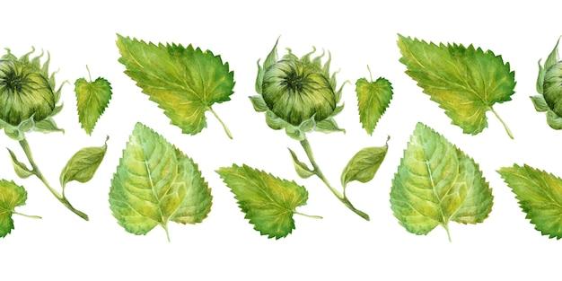 Bordo dell'acquerello con brillanti girasoli, foglie e gemme della pianta