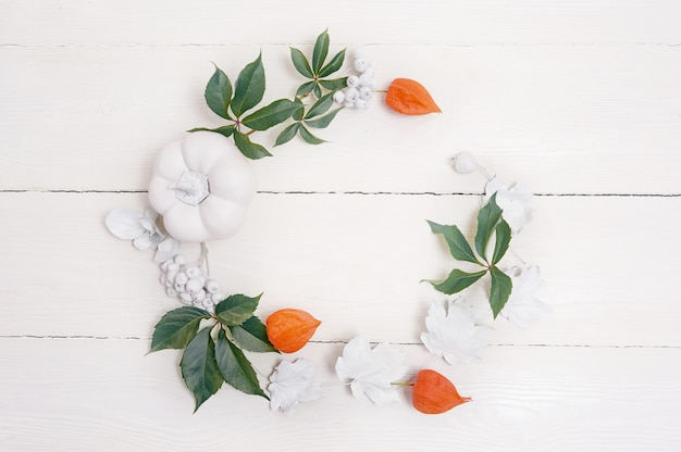 Bordo inferiore autunnale di zucche bianche e foglie d'argento
