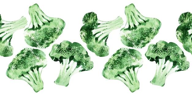 Bordo senza giunte dell'acquerello con diversi tipi di cavolo. cavoletti di bruxelles, broccoli e cavolo nero
