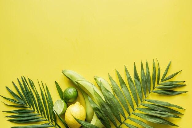 Bordo tropicale di frutti, banana, lime, foglie di palme. detox tour.