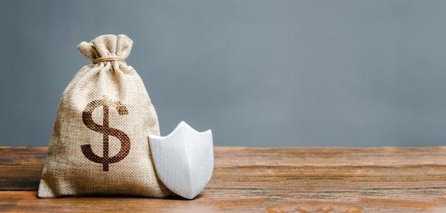 Borsa con simbolo del dollaro e scudo di protezione.