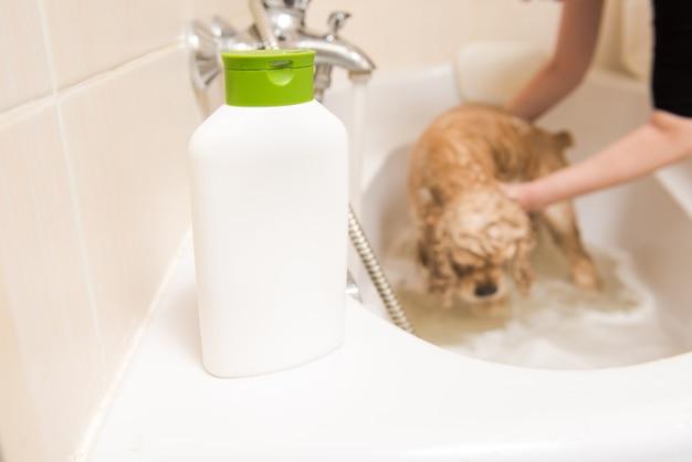 Bottiglia con shampoo in bagno