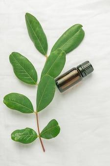Bottiglia di brown scuro con il ramo di albero dell'olio essenziale con le foglie verdi fresche sul fondo bianco del tessuto di cotone di tela.